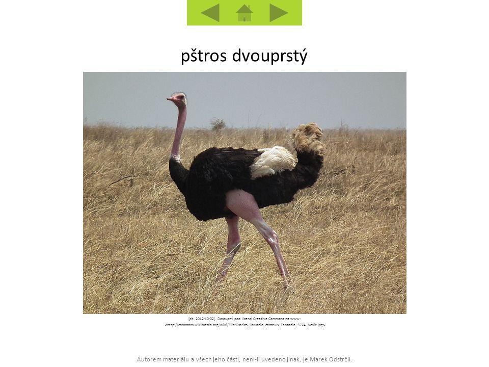 [cit. 2012-10-02]. Dostupný pod licencí Creative Commons na www: